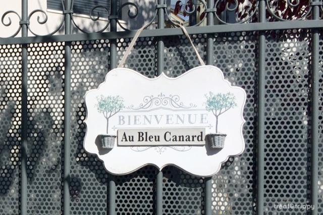 bleu-canard8